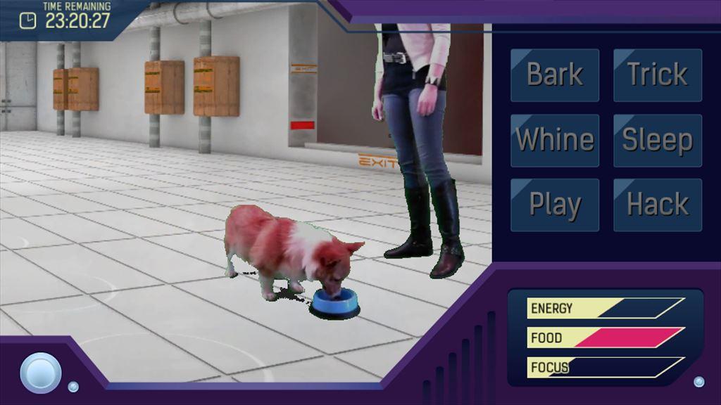 Corgi Simulator 2071